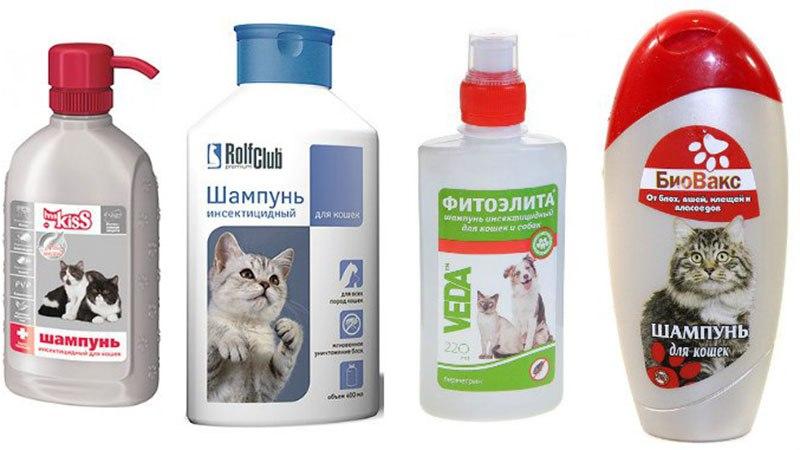 Средства гигиены для купания кошек