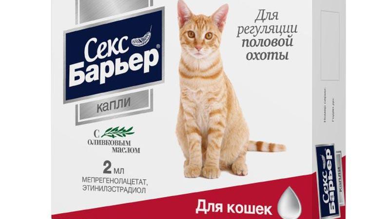Лекарства кошкам вместо стерилизации